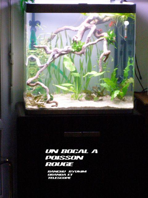 fishroom (fishappart) Derwins 15.271