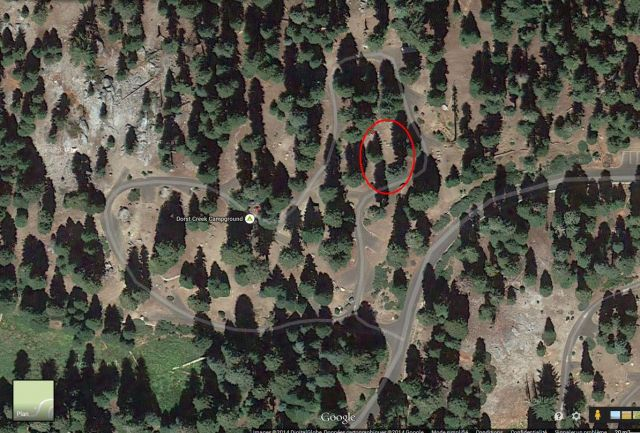 sequoia Park 03.48