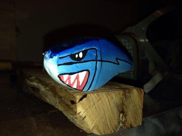 Un petit shark 08.90