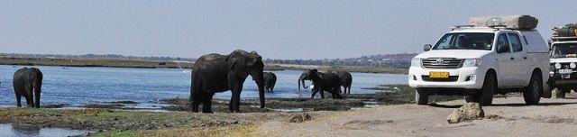 Namibie/Botswana/Zimbabwe - Page 2 26.7